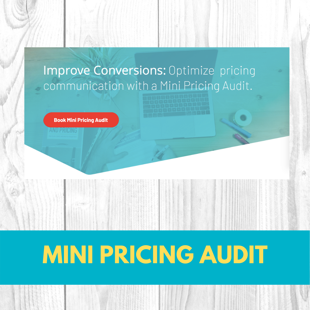 Mini Pricing Audit